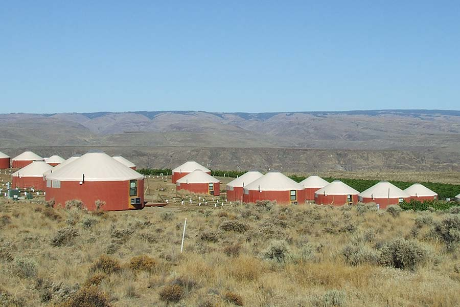 The Desert Yurts (as they are known) sit high on a cliff above the Columbia River among a large Estate Vineyard and Winery. The twenty-five units are overnight rentals for guests of the winery and music venue next door.