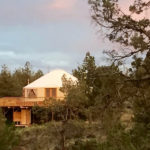 Yurt Survives Forest Fire!